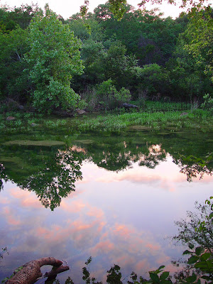 Reflections in Barton Creek, near Austin TX.