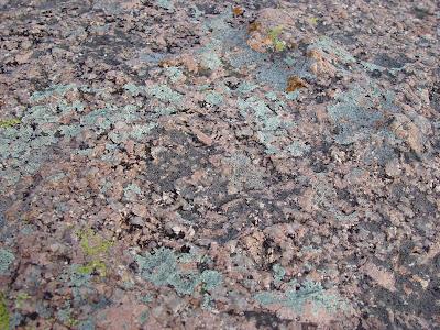 Pink granite and lichen - Enchanted Rock near Fredricksburg, Texas.