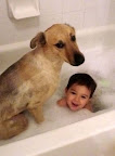 Time to come clean! Boy and dog in bubble bath.