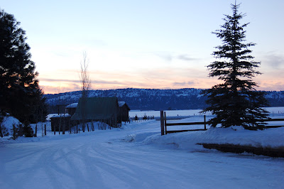 Chilly winter twilight near McCall, ID. Photo by Lisa Callagher Onizuka