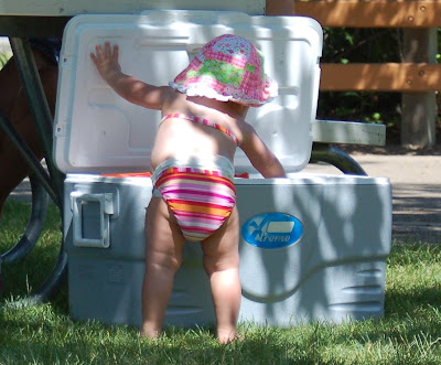 Beach baby getting into the cooler.