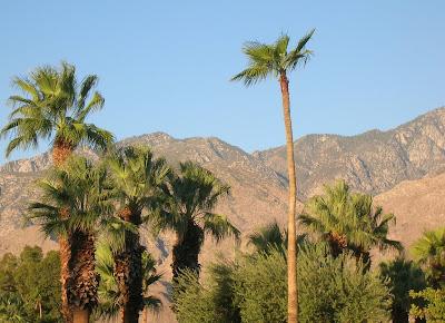 Palm Springs, CA mountain backdrop.
