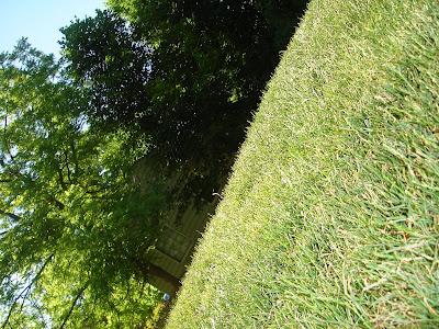 Sideways playground.