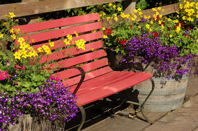 Inviting bench and bright flowers.
