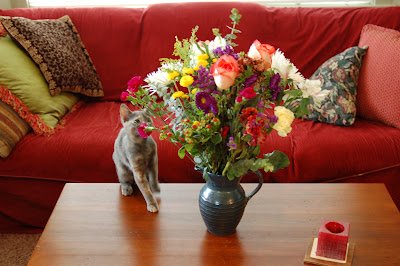 Rosie the kitten smelling the birthday flowers.