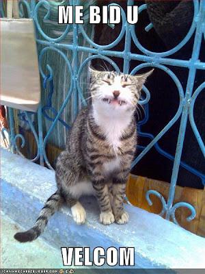ME BID U VELCOM - Happy Halloween - LOLcats from IcanHasCheezburger.com