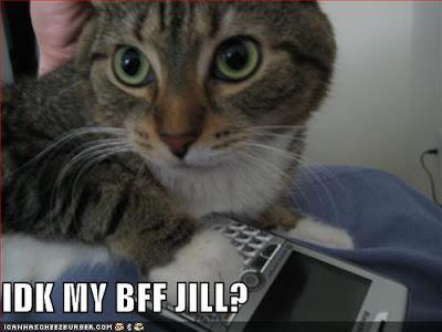 IDK my BFF Jill? - LOLcats from IcanHasCheezburger.com