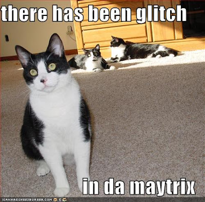 there has been a glitch in da maytrix - - LOLcats from IcanHasCheezburger.com