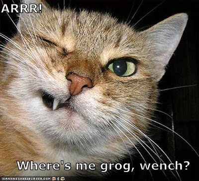 ARRR!!! Where's me grog, wench? - LOLcats from IcanHasCheezburger.com