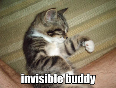 invisible buddy - LOLcats from IcanHasCheezburger.com