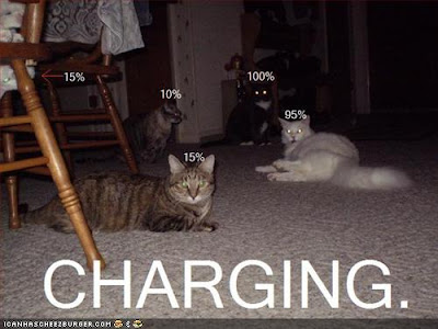 CHARGING - LOLcats from IcanHasCheezburger.com