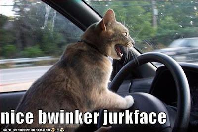 nice bwinker jurkface - LOLcats from IcanHasCheezburger.com