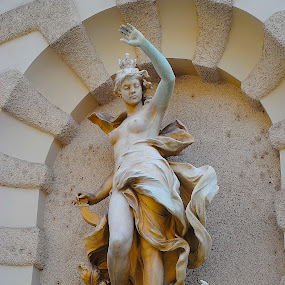 Vienna, Austria by Ray Anthony Di Greco - Artistic Objects Other Objects ( cities, statues, art, architecture, travel )