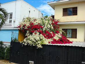 Photo: Это, как потом оказалось улица работников посольств...