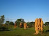 3 Week Australia Itinerary Road Trip National Parks Wildlife // Magnetic Termite Mounds, Litchfield National Park