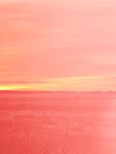 Photo: Pink tone