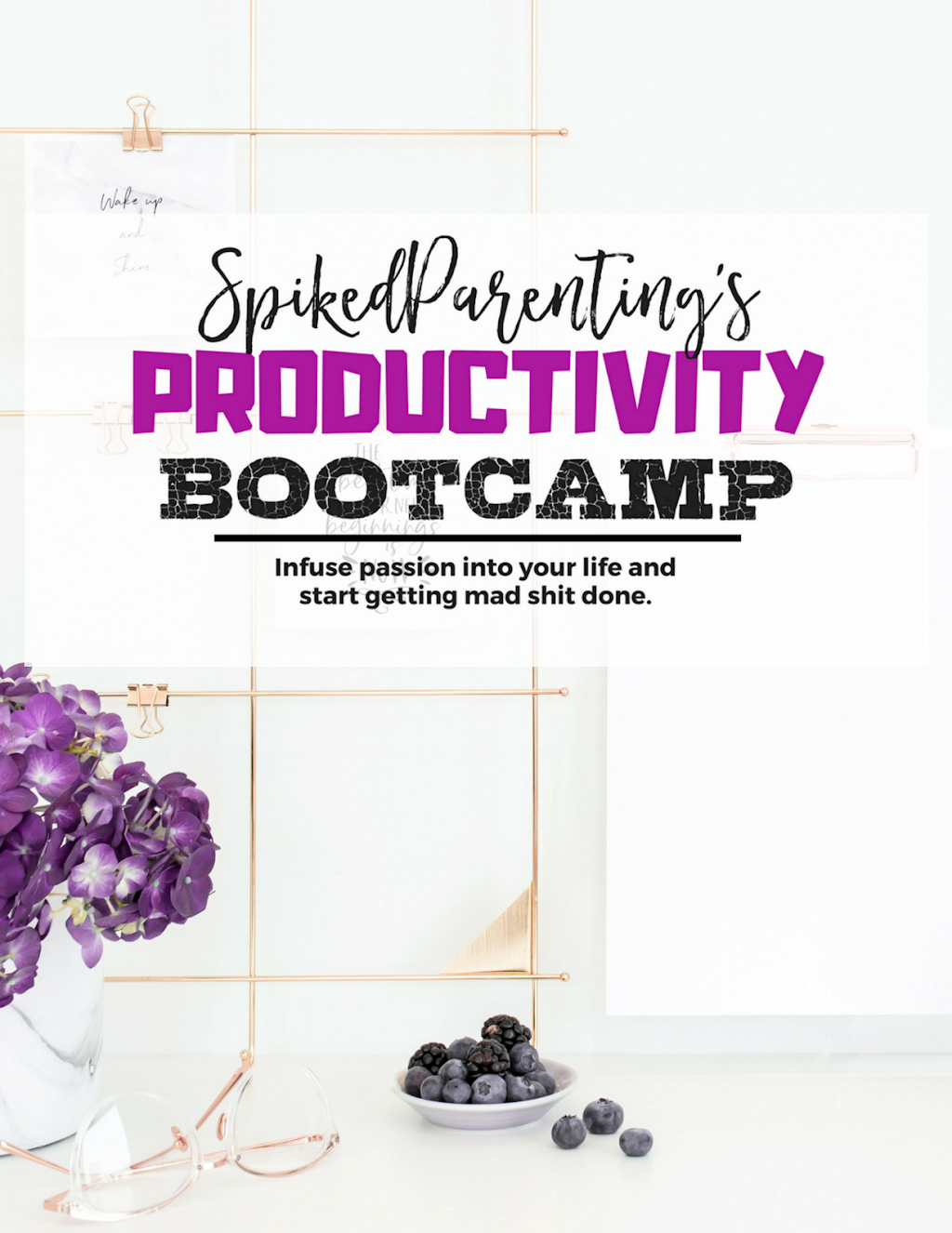 SpikedParenting's Productivity Bootcamp   Infuse Passion Into Your Life and Start Getting Mad Shit Done