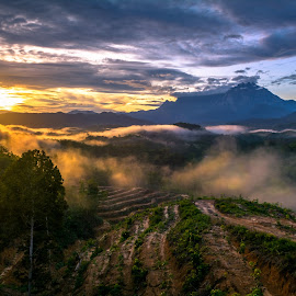 An Foggy Morning at Mt.Kinabalu.Sabah by Ted Khiong Liew - Landscapes Travel ( clouds, foggy, mountain, trees, sunrise )