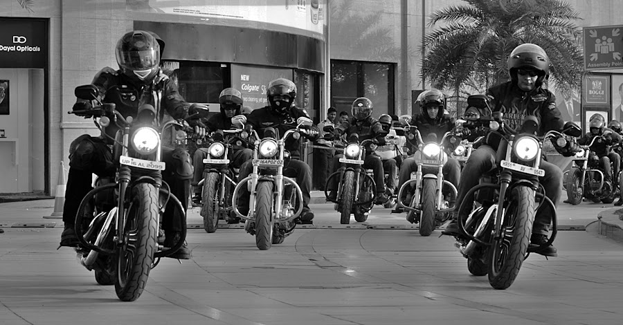 Harley Davidson  by Jazz Photography - Transportation Motorcycles ( harley davidson, harley, bike, cruiser, racing,  )