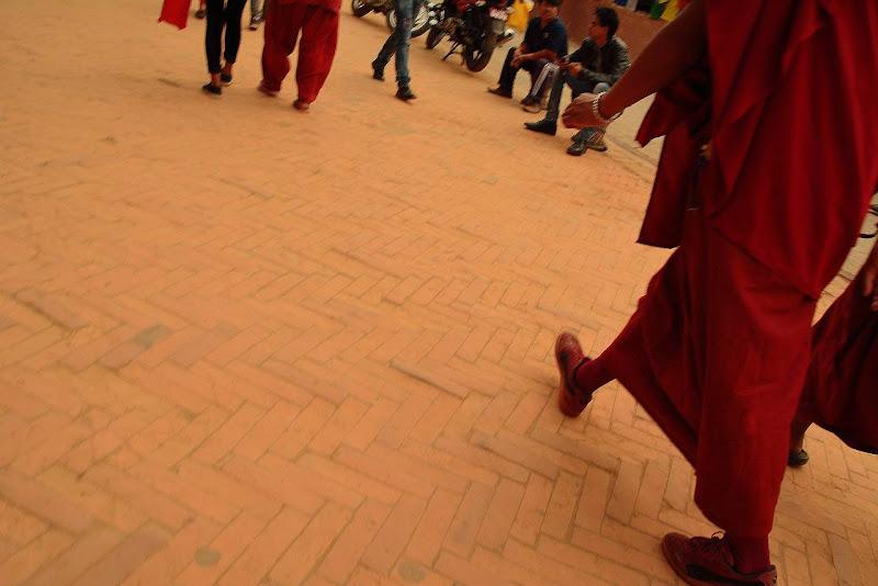 Monaco tibetano rosso di alegio89