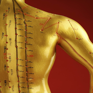 Acupressure Point for Cure 300 Diseases - náhled