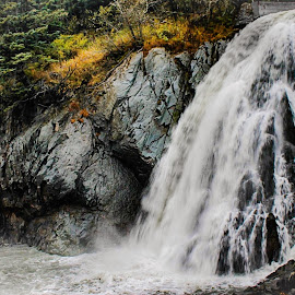 Lowell Point Waterfall by Patricia Phillips - Landscapes Waterscapes ( alaska seward lowel point waterfall )
