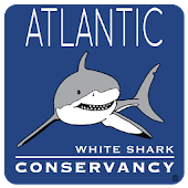 Sharktivity - White Shark App
