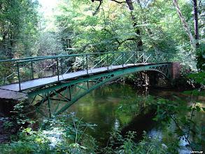 Photo: Mostek do zaczarowanego lasu
