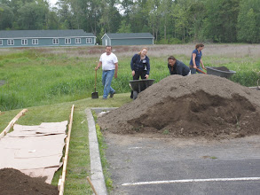 Photo: Loading the soil in the beds... cardboard has been laid down to stop weed and grass growing