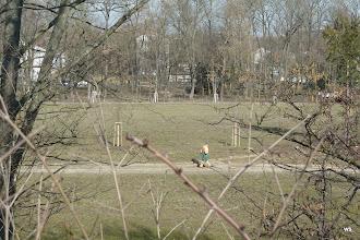 Photo: fasanenhof / widerstandsbäume?