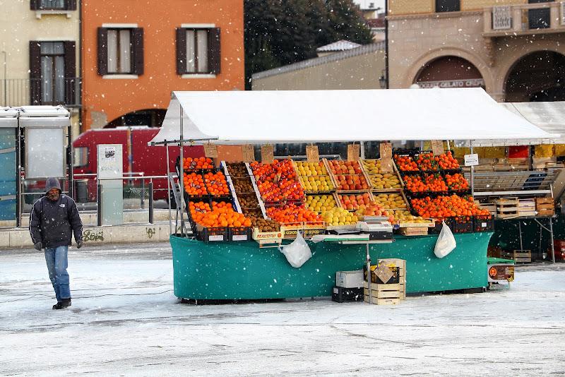 Vitamine per l'inverno di Yoyo