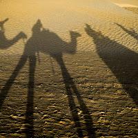 Deserto del Sahara. di
