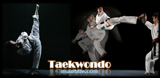 karate vs taekwondo diferencias