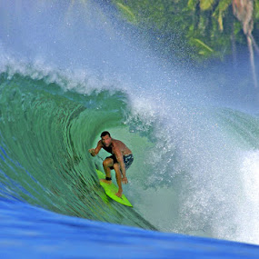 The Island  by Paul Kennedy - Sports & Fitness Surfing