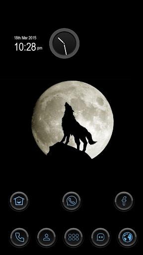 Determination of Wolf