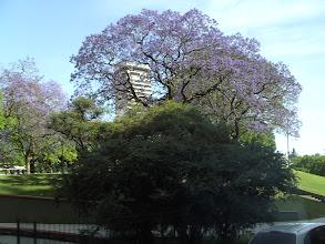 Photo: Buenos Aires city tour