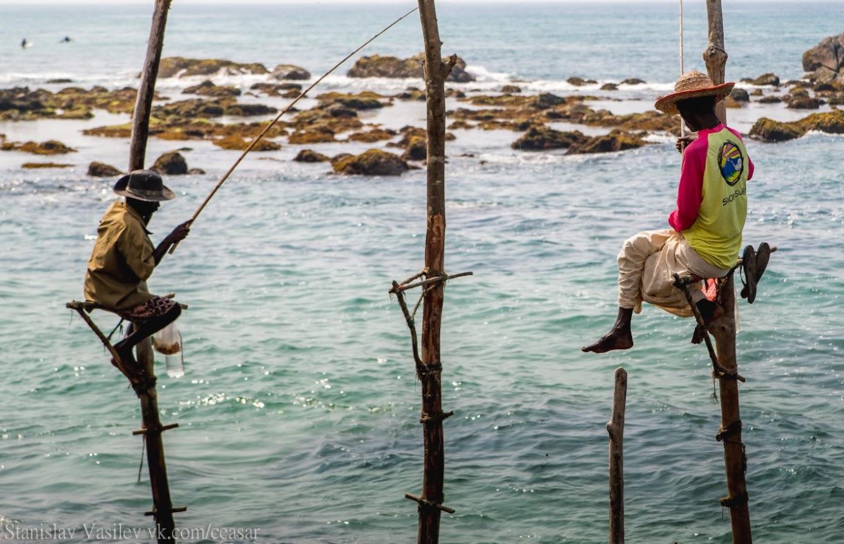 Рыбаки на жердочках