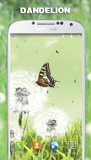 蒲公英动态壁纸|玩攝影App免費|玩APPs