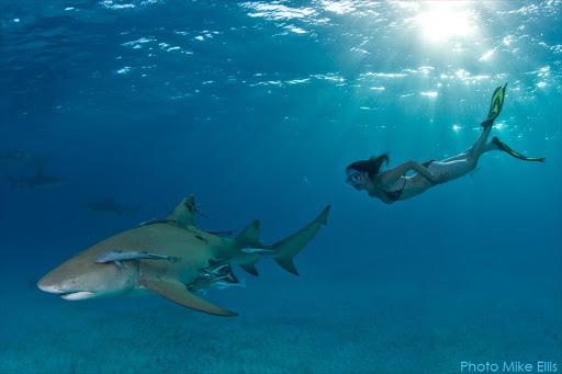 Naked shark conservationist makes her point UNDERWATER