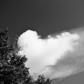 heart of sky by Mihail Golu - Landscapes Cloud Formations ( clouds, sky, heart,  )