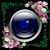 Sky Camera - Selfie file APK Free for PC, smart TV Download