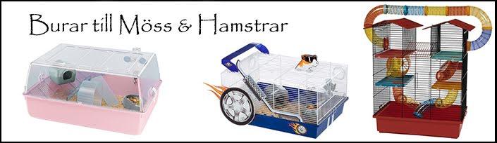 Mus & Hamster