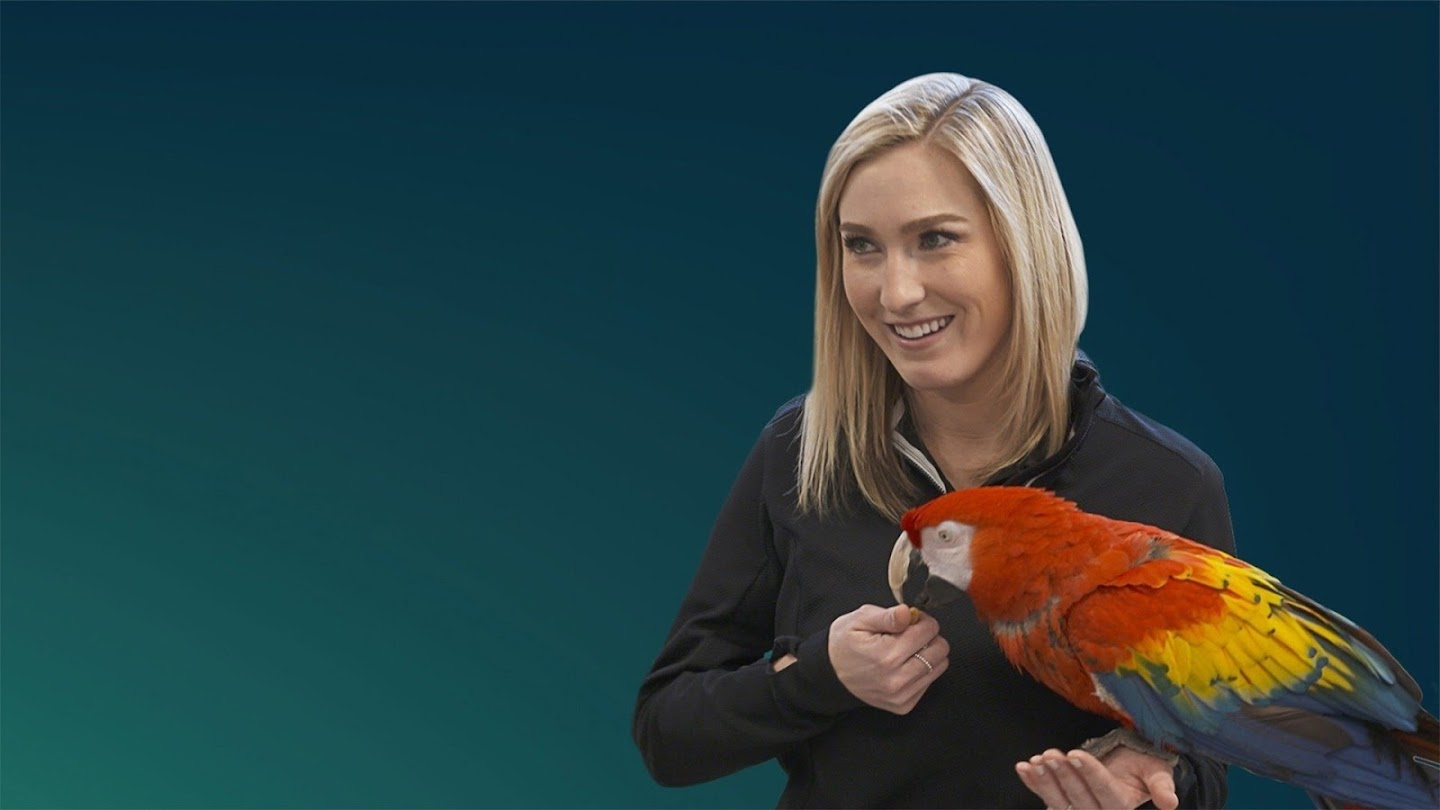 Watch Secrets of the Zoo: Keeper Tales live