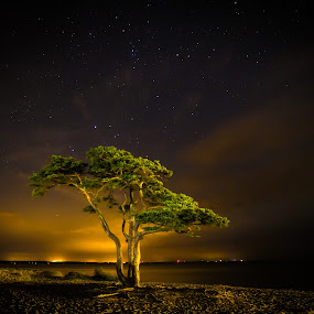 by Jocke Mårtensson - Landscapes Starscapes (  )