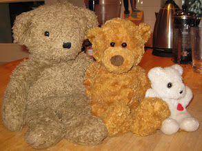 Photo: Once upon a time, there were three bears, a Papa Bear, a Mama Bear, and a Baby Bear.