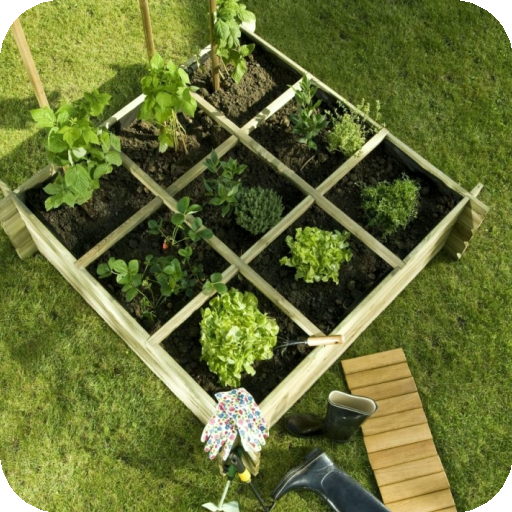 Urban Garden And Sowing. Android APK Download Free By Estrella Azul