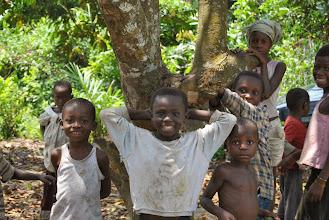 Photo: CSDI project, Congo