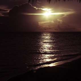 Sunrise by Paul Popovici - Black & White Landscapes (  )
