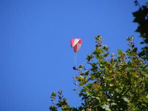 Photo: Sospel is a gliding sports center, and as we relax on the Place du Marche, I catch this parasailer at high zoom just before he disappears above the trees. Then, after an enjoyable visit to this backcountry town, it's once again down the lacet route to our lodging.