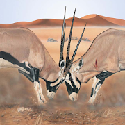 App Icon for Mammals of the Southern African Subregion App in Czech Republic Google Play Store